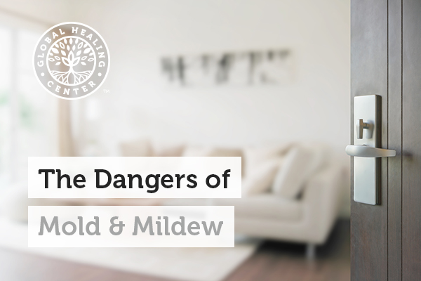 Mold Can Be Found In Common Places Like Homes And Offices