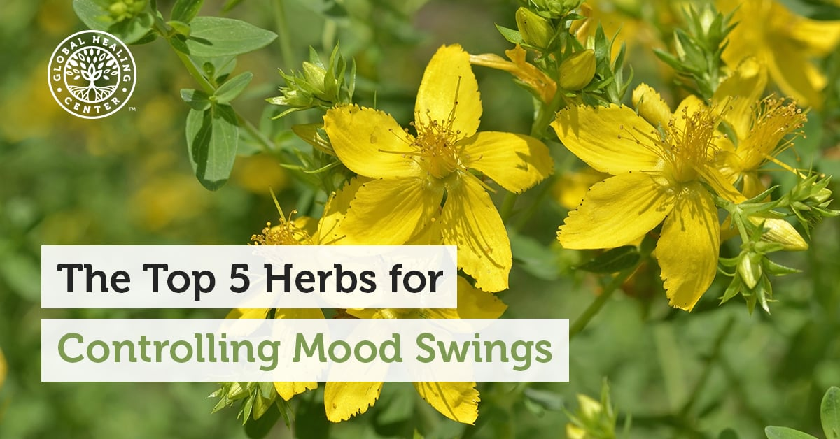 The Top 5 Herbs for Controlling Mood Swings