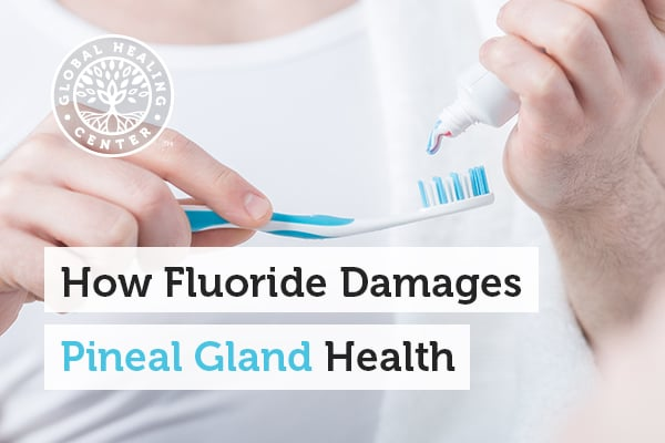 A person holding toothpaste. Fluoride harms the pineal gland health.