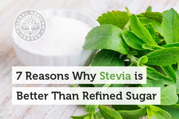 Stevia contains no calories and helps to suppress cravings.