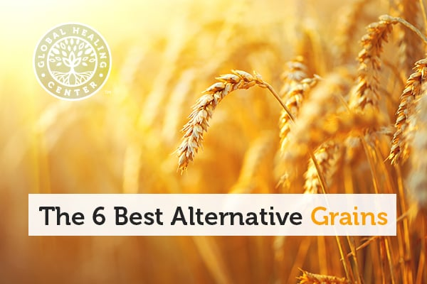 A grain of wheat. Grains like millet and quinoa are great alternative wheat.