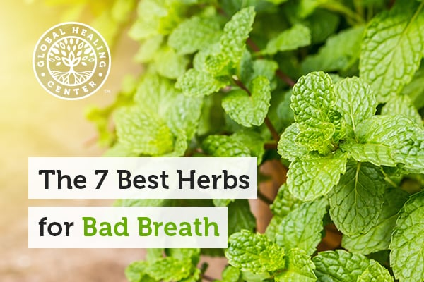 Peppermint is one of the best herbs for bad breath.