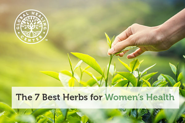 Avena sativa is one of the best herbs for women's health.