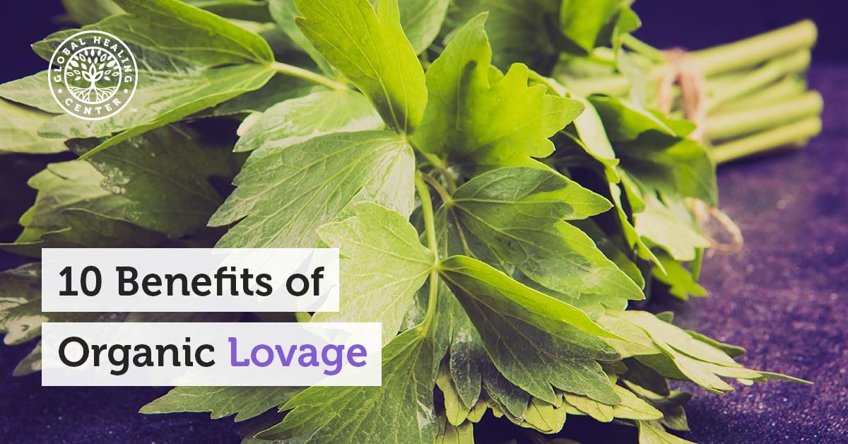 10 Benefits Of Organic Lovage