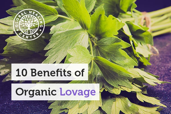 Lovage helps support healthy skin and help fight harmful organism.