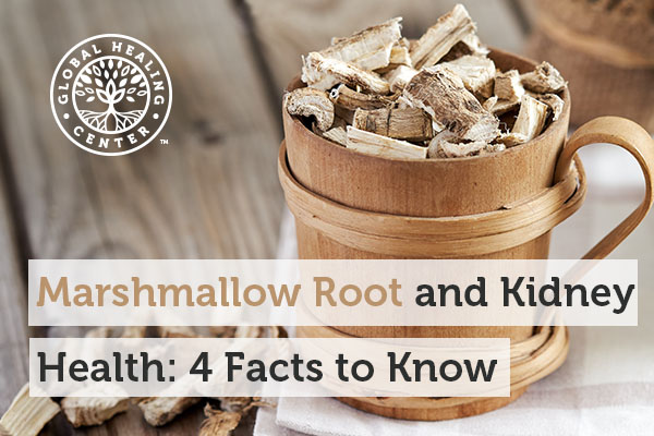 Marshmallow root supports smooth tissue and fights infection.