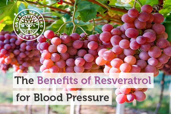 Resveratrol is commonly found in grapes and help support healthy blood pressure.
