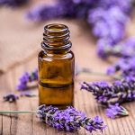 7 Health Benefits of Lavender Oil