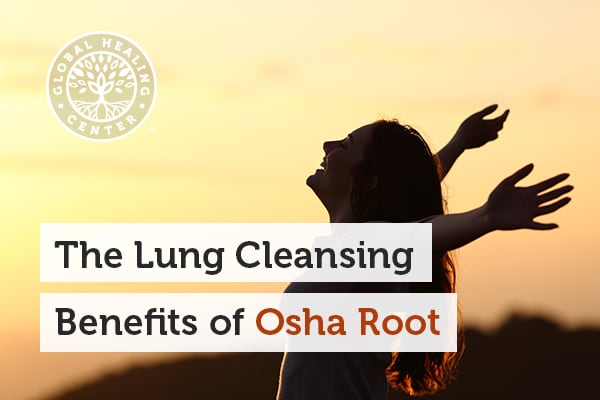 Osha Root can help alleviate breathing concerns.