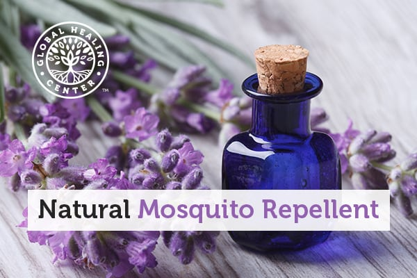 Essential oils are a great natural mosquito repellent.