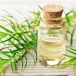 Tea Tree Oil: Benefits, Uses, & Side Effects