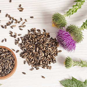 Milk Thistle: Liver Health Benefits & Liver Detox Support