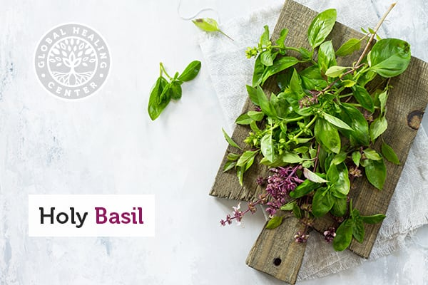 Holy basil on a cutting board. This therapeutic herb can be used to make tea or as a supplement.