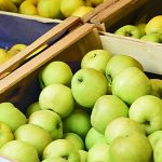 FDA Approves New GMO Foods Apples and Potatoes