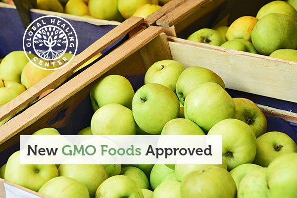 Apples are now approved as a new GMO food.