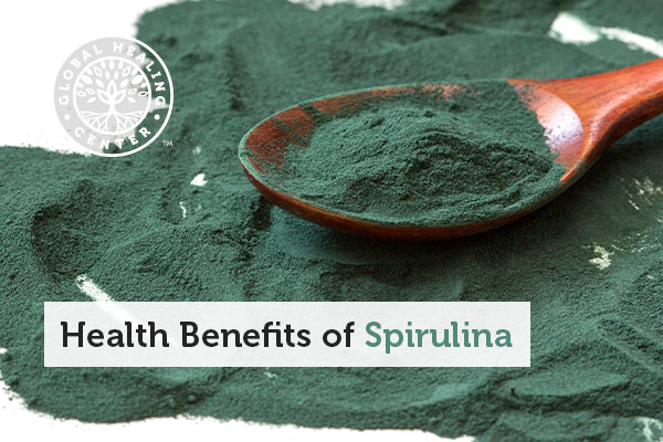 A spoonful of powdered spirulina.