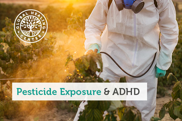 A man spraying plants with pesticides.
