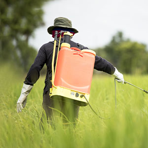 Parkinson's Disease: Could Pesticides Be a Cause?