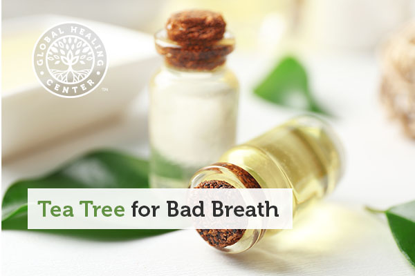 A bottle of tea tree oil, which is commonly used for bad breath.