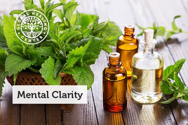 Several bottles of peppermint oil and leaves.