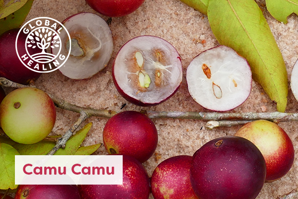 The camu camu fruit